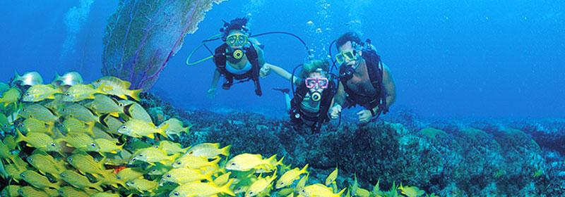 snorkeling-header2