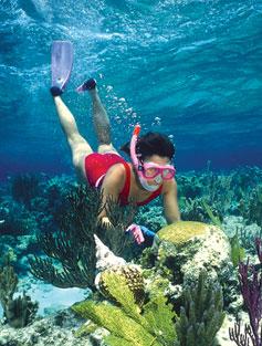 snorkeling-photo